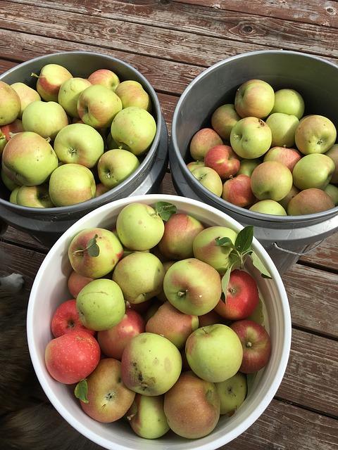 Jablečná povidla recept