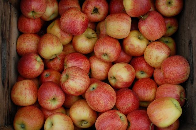Jablečný kompot recept
