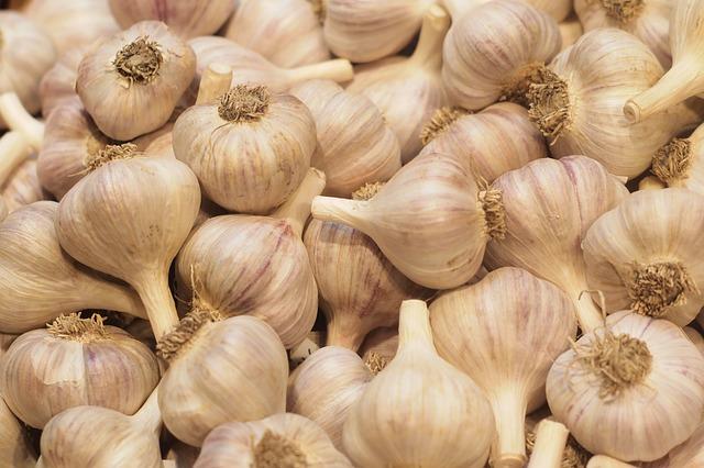 Zavařování česneku recepty