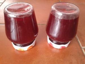 Rybízový džem recept
