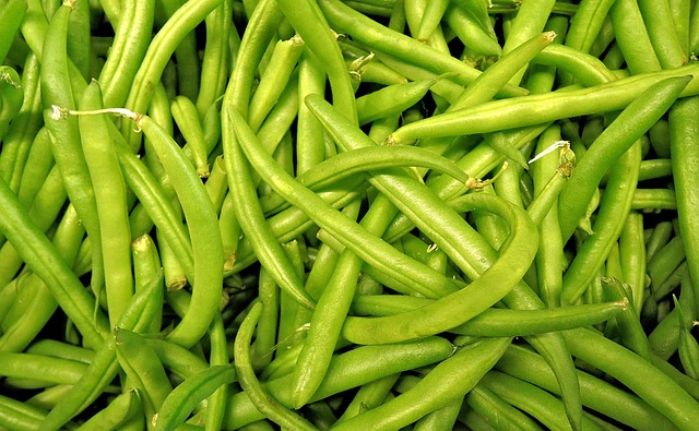 Nakládané fazolky ve sladkokyselém nálevu recept