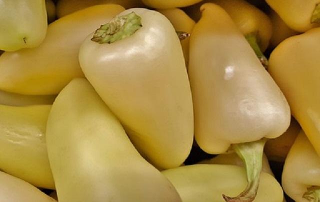 Nakládané papriky se zelím recept