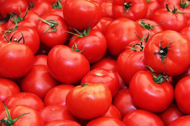 Zavařování rajčat recepty