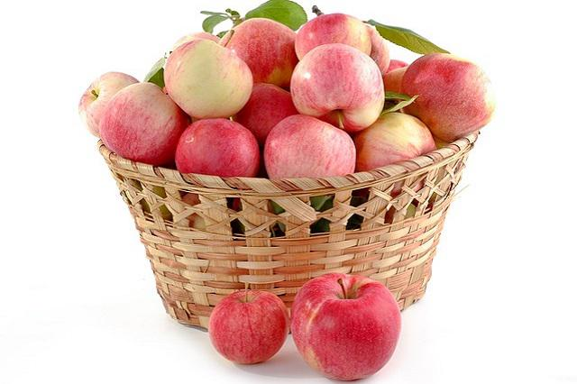 Jablečný džus recept
